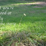 What you're not good at is only half the story