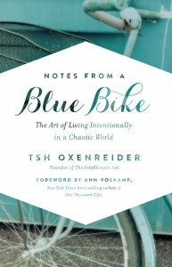 notes-from-a-blue-bike-650x1009
