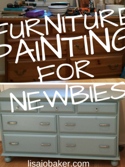 Furniture painting for beginner newbies like me at lisajobaker.com