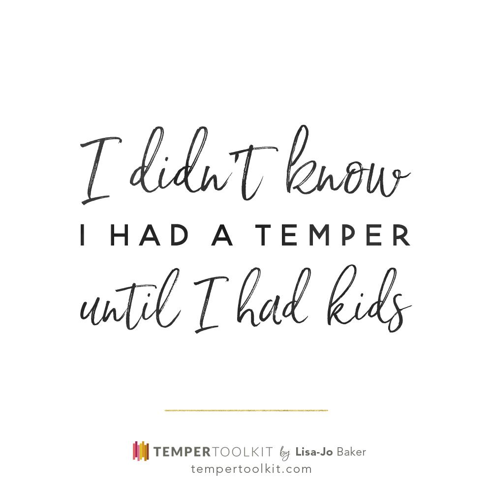 TemperToolkit_SM3-bw